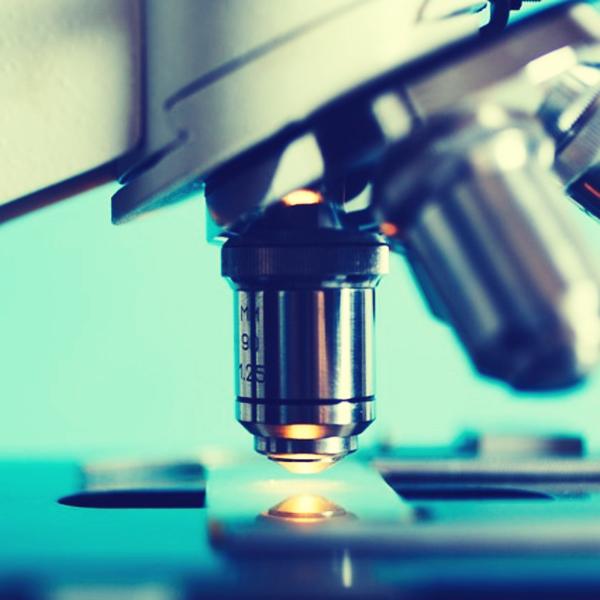 guia elegir microscopio