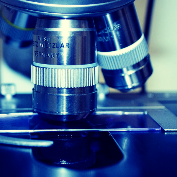 portaobjetos para microscopio